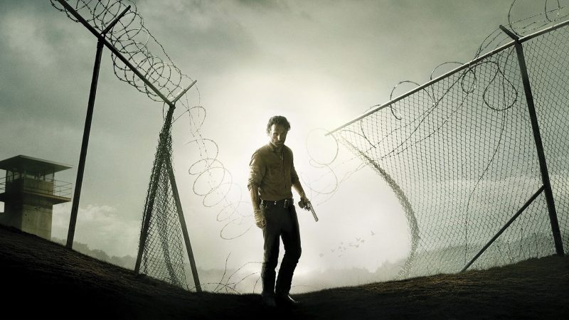 The Walking Dead (10)