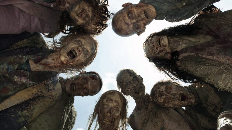 The Walking Dead (35)