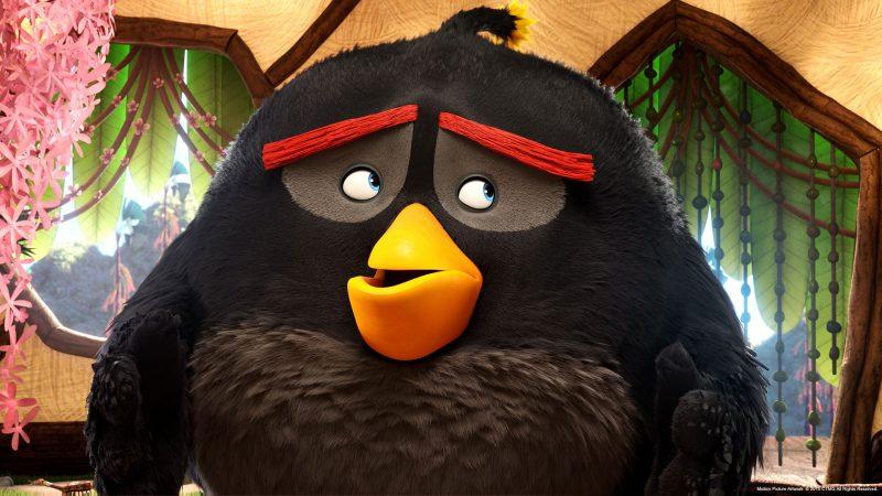 angrybirds-pelicula-fondo-5