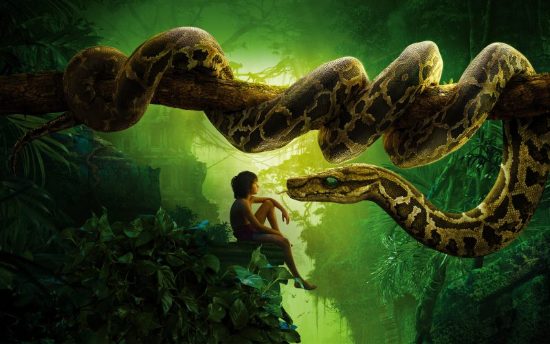 el-libro-de-la-selva-2016-disney-fondos-hd
