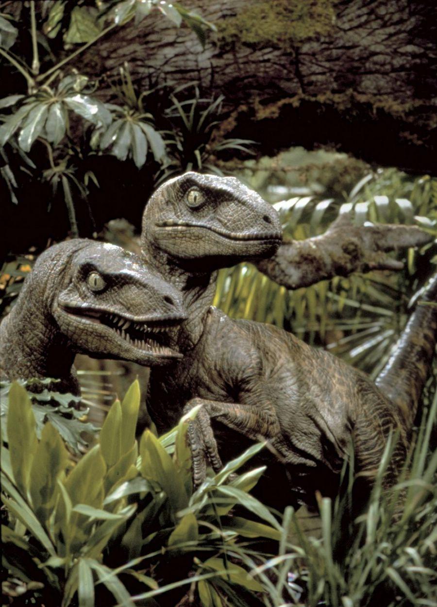 Fotos de Jurassic Park...