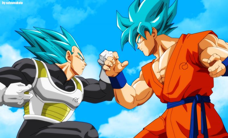 Goku y Vegeta Super Saiyan Dios Wallpaper