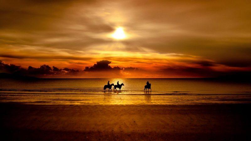 playa-al-atardecer-con-caballos-foto-hd
