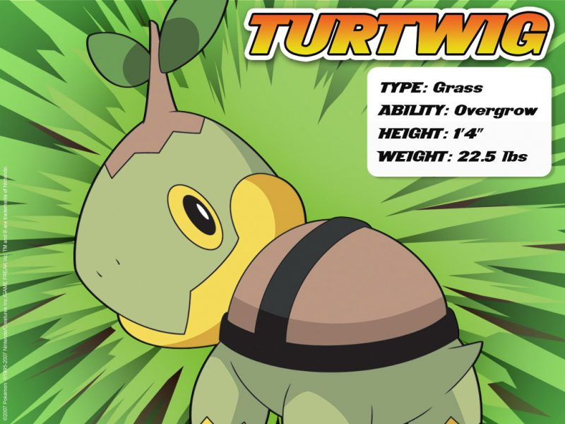turtwig-pokemon