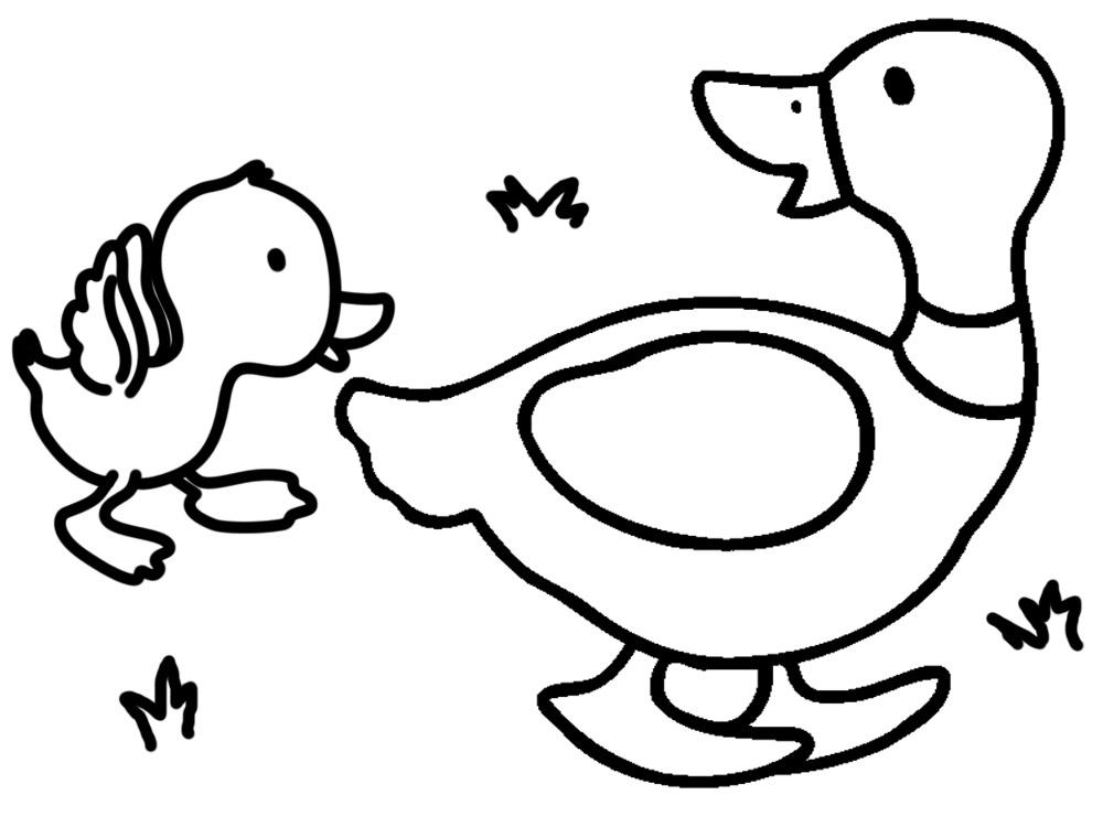 Dibujos De Patos Para Colorear Para Niños: Dibujos De Animales Para Colorear, Pintar E Imprimir Gratis