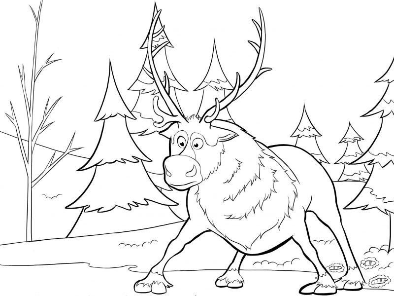 dibujos-para-colorear-de-frozen-reino-del-hielo-2