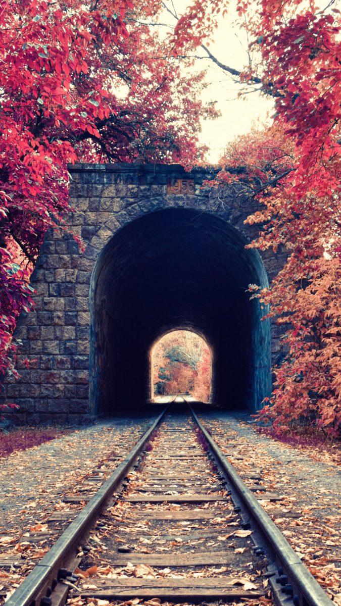 fondos-de-pantalla-otoño-movil