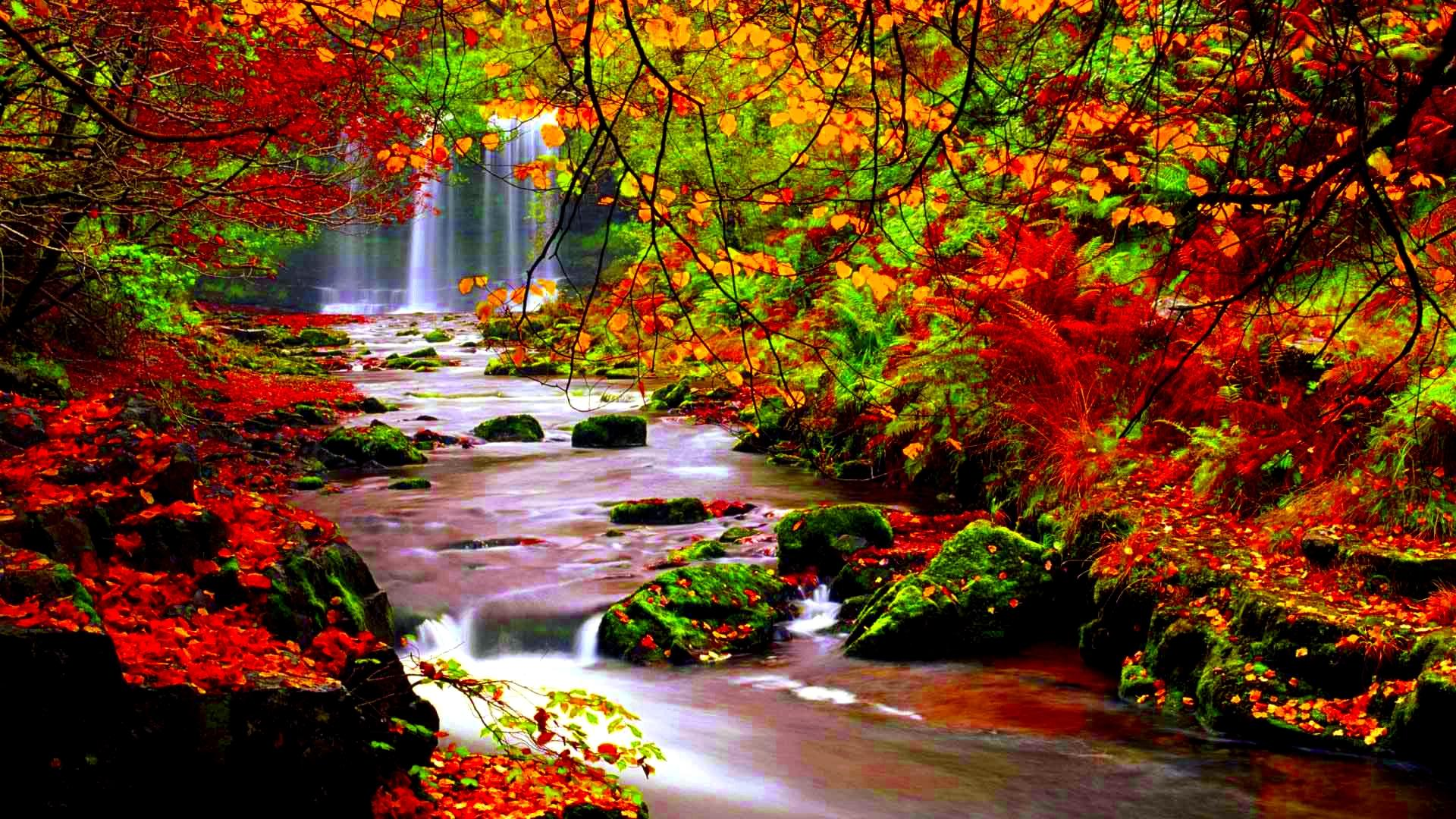 Fondos oto o wallpapers autumn fondos de pantalla de oto o for Wallpaper gratuit hd