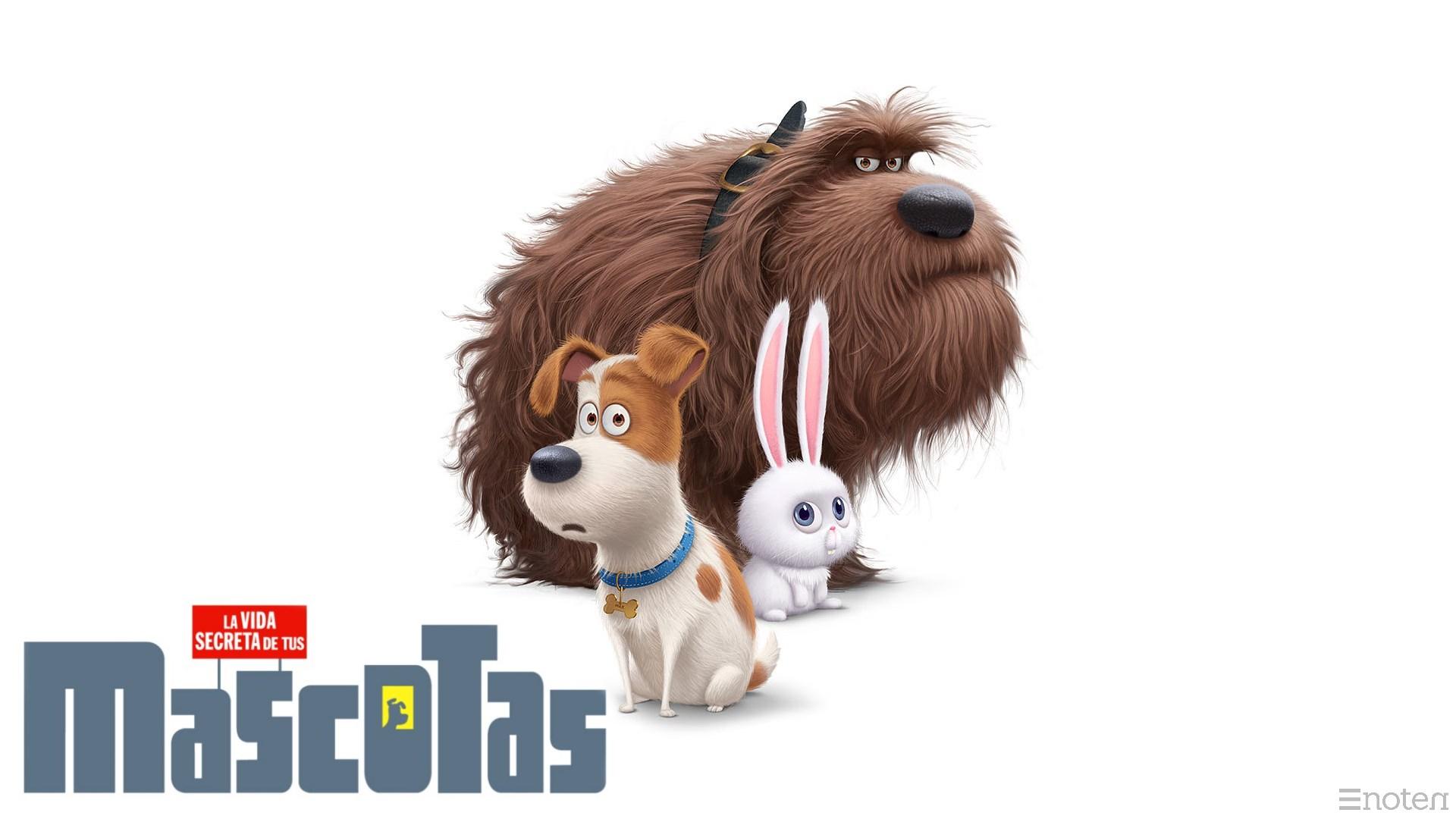 Fondos Mascotas, Wallpapers Mascotas Pelicula Gratis