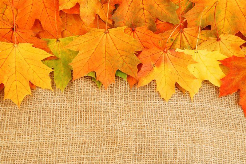 hojas-otoño-fondos
