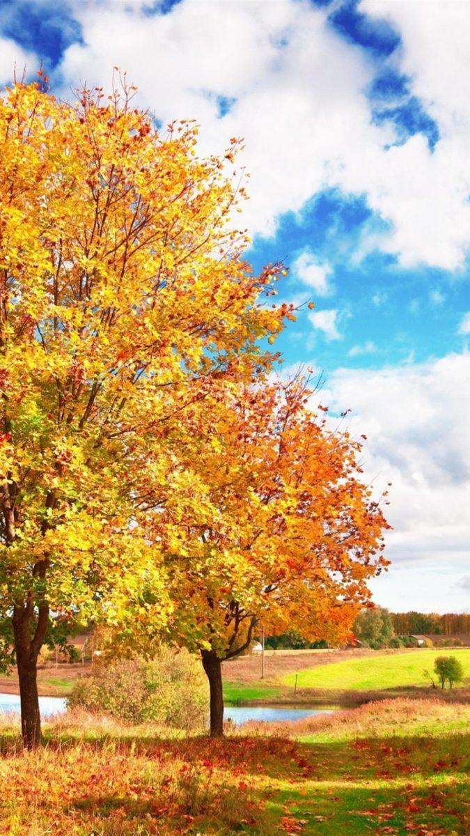 movil-fondos-otoño
