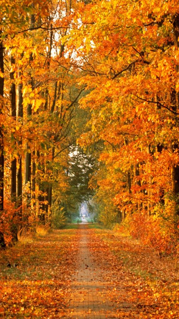 otoño-iphone