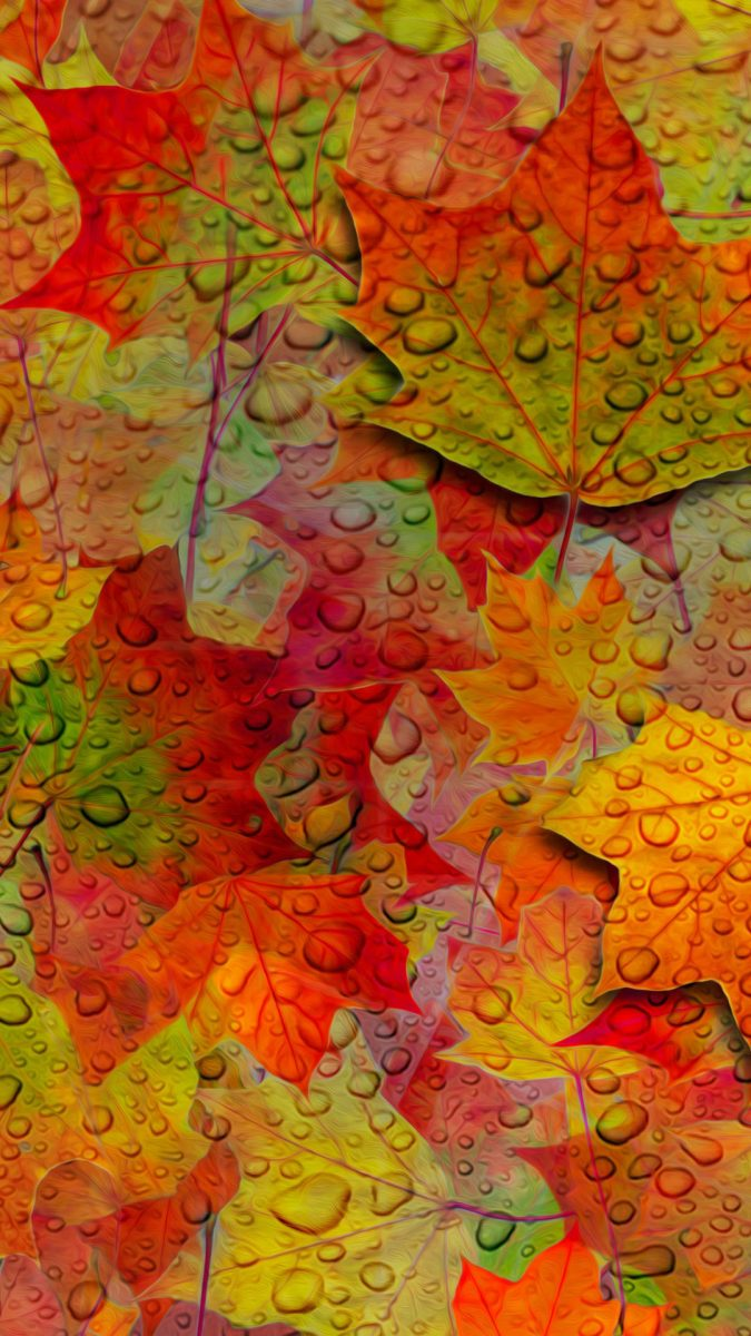 otoño-wallpapers-android