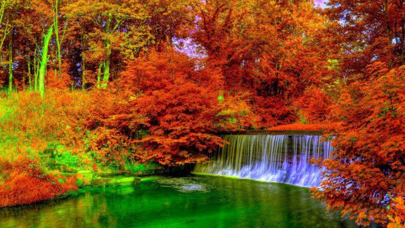 fondos del otoño, wallpapers