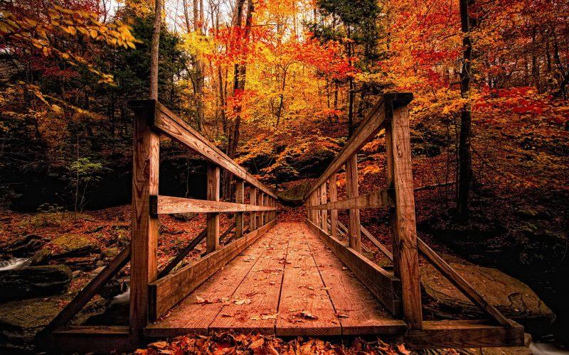 paisajes-de-otoño-fondos-de-pantalla