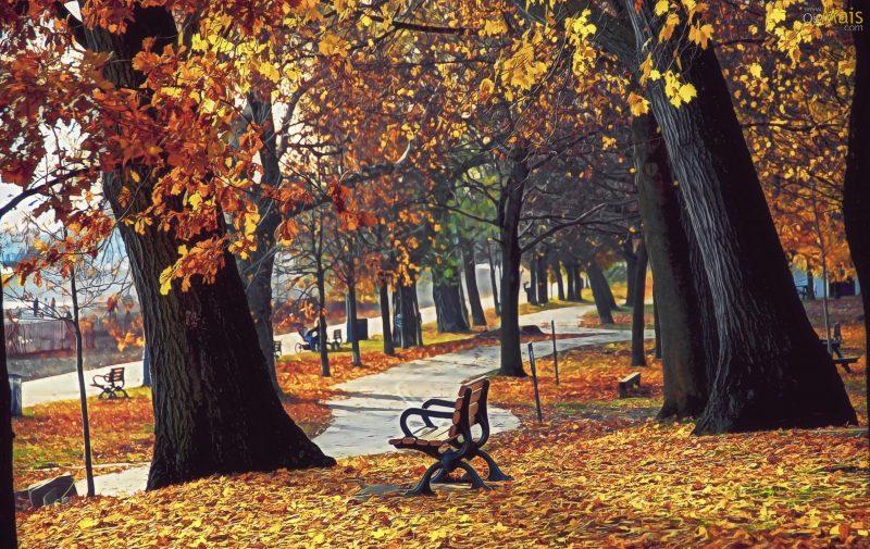 paisajes-de-otoño-para-fondos-hd
