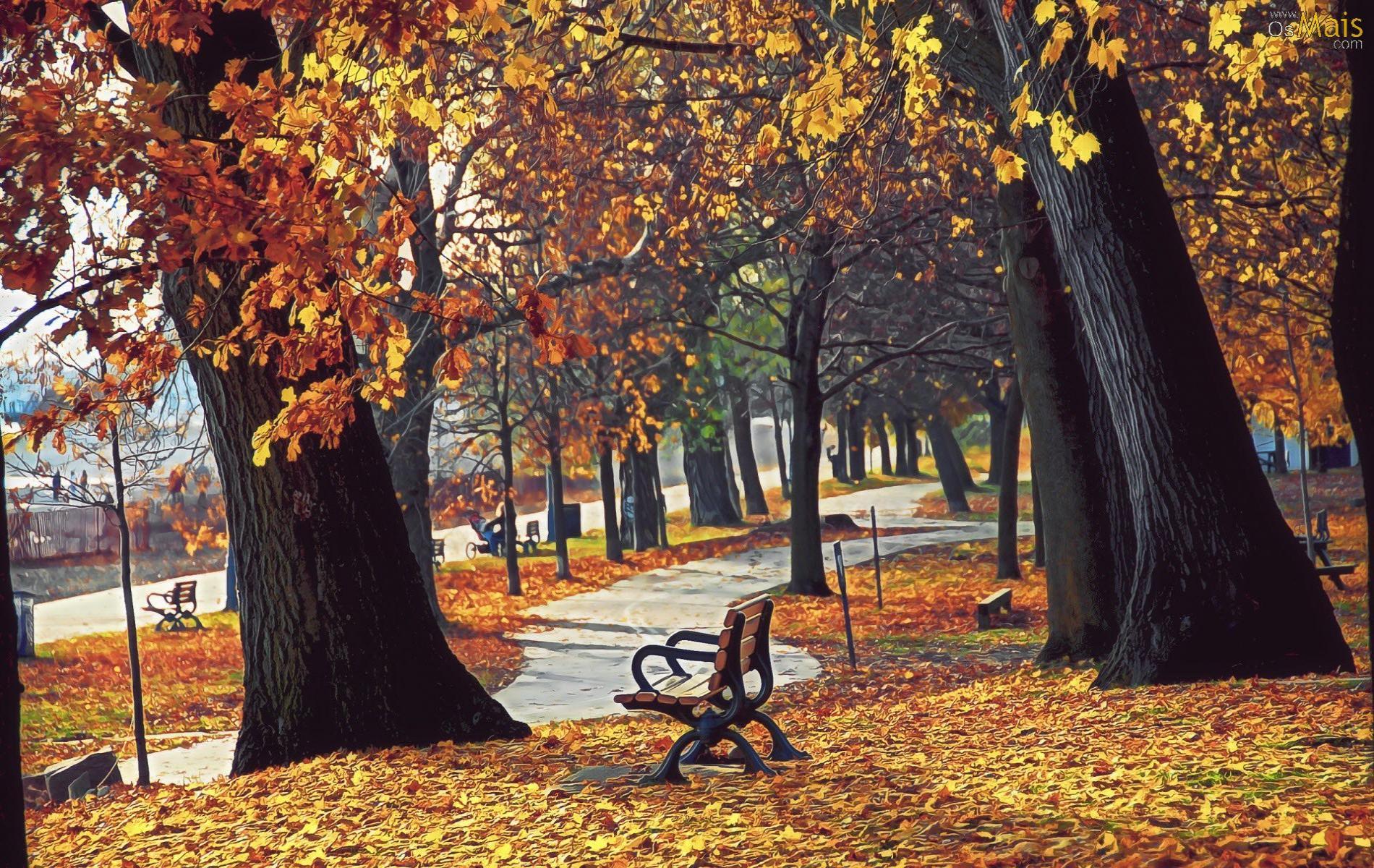 Mis Fondos Para Fotos Gratis: Fondos Otoño, Wallpapers Autumn, Fondos De Pantalla De Otoño