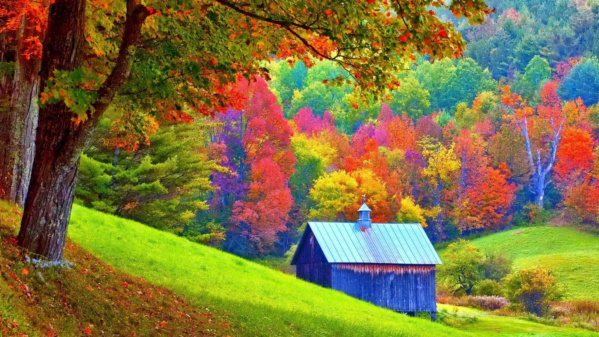 Fondos oto o wallpapers autumn fondos de pantalla de oto o for Imagenes bonitas para fondo de pantalla
