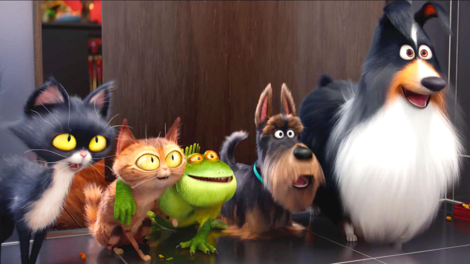 Fondos mascotas wallpapers mascotas pelicula gratis for Tattoo secret life of pets