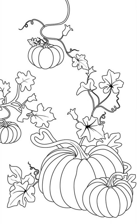 Elk Head Coloring Pages Images Pictures Becuo besides Fall Pumpkin Coloring Pages in addition Christmas Tree Ornaments X as well Dt Qygec together with Yckro Y I. on fall leaves coloring pages 2016