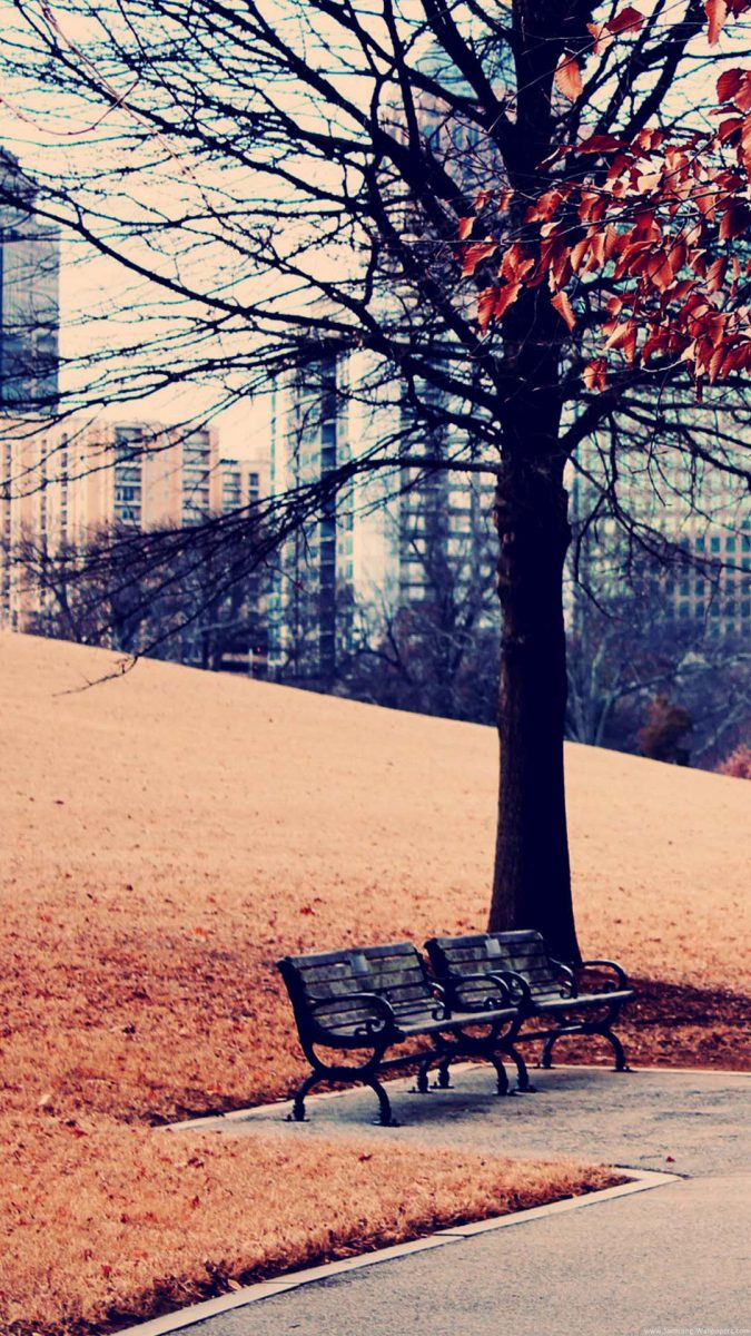wallpapers-otoño-fondos-movil