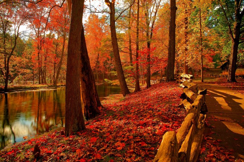 wallpapers-otoño-hd