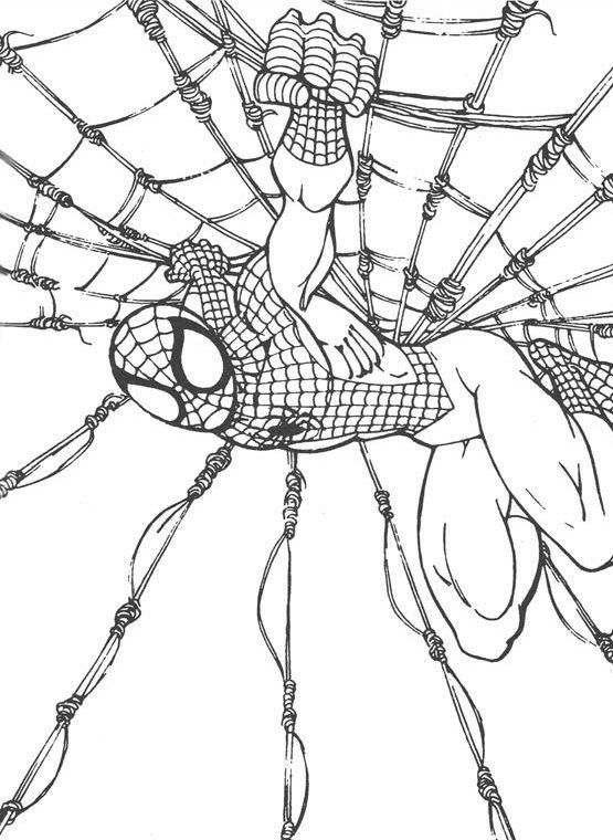 Dibujos de Spiderman para colorear 10