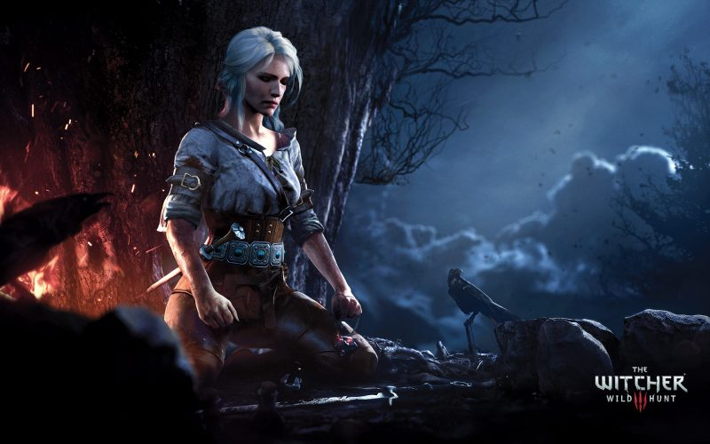 the-witcher-wallpapers-9