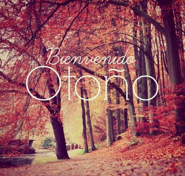 imagenes de bienvenido otoño para whatsapp y facebook
