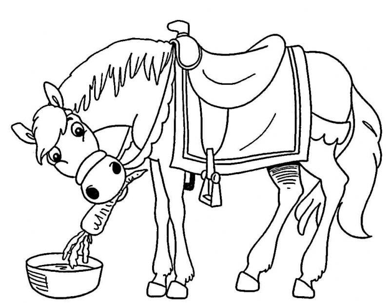 caballos-para-colorear-dibujos-infantiles