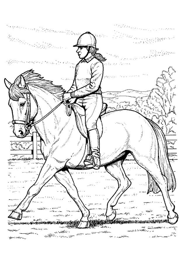 colorear-caballo-dificil