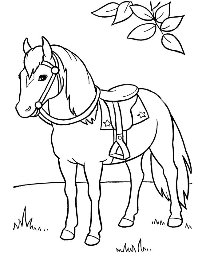 dibujo-caballo-facil-para-colorear