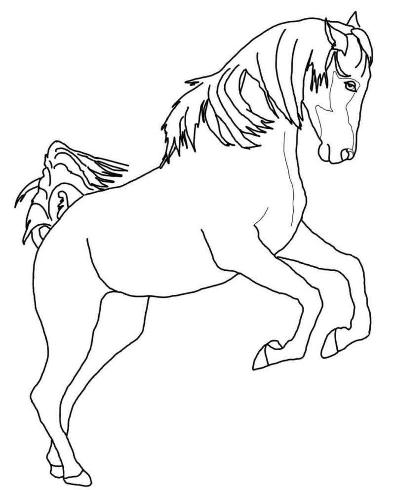 dibujo-caballo-saltando
