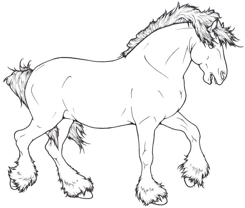 dibujo-caballo-salvaje