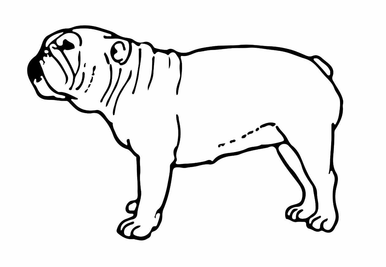 Juegos Para Colorear Gratis Para Niños: Dibujos De Perros Para Colorear E Imprimir Gratis