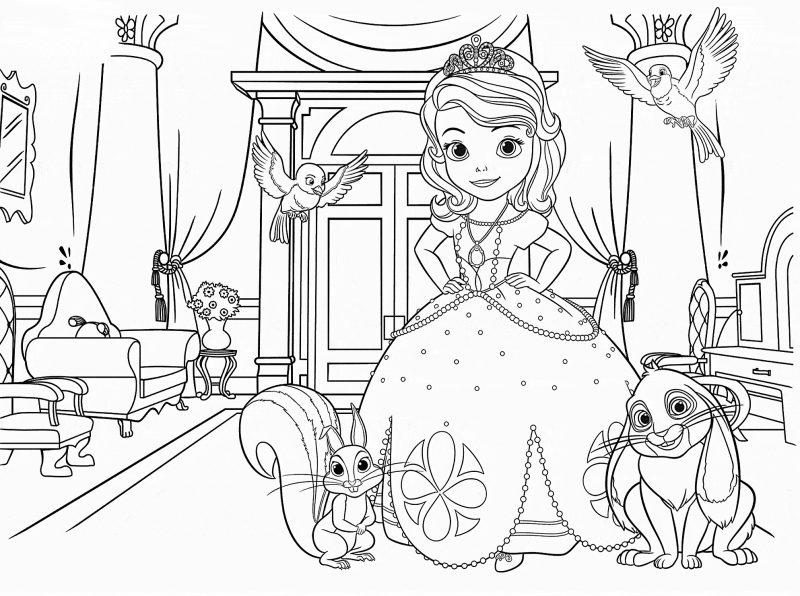 22 Dibujos Para Colorear De Princesas Disney Gratis: Dibujos De La Princesa Sofia Para Colorear, Dibujos Disney