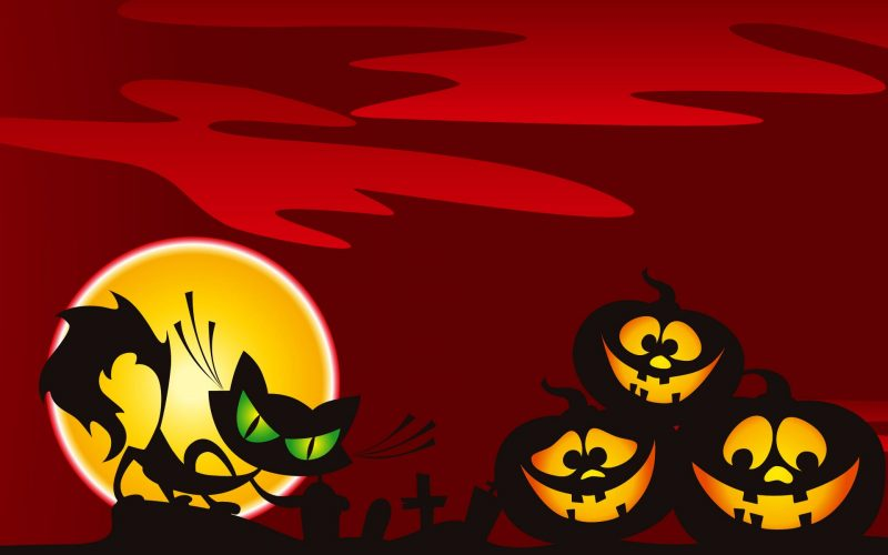 gato-y-calabazas-halloween-wallpaper