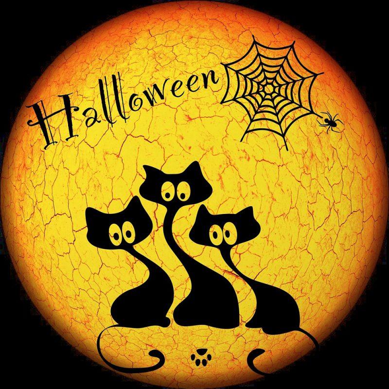 halloween-whatsapp