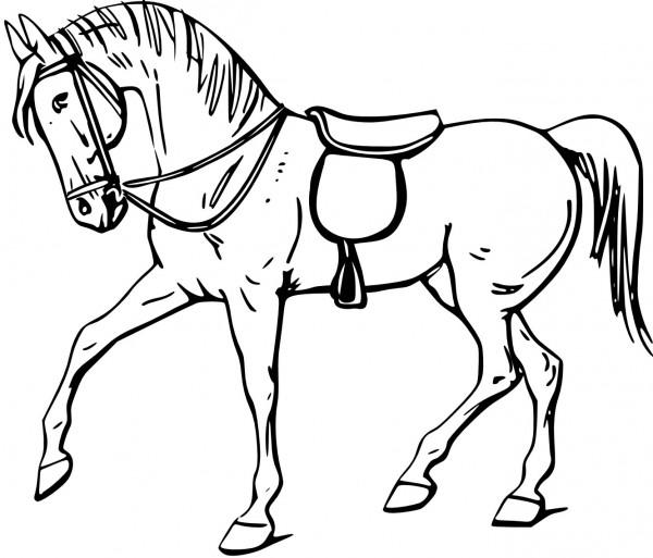 imagenes-caballos-para-colorear