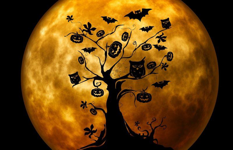 la-noche-de-halloween