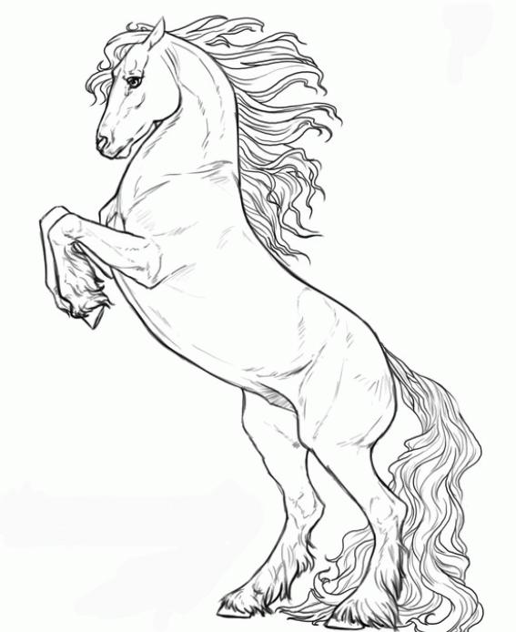pintar-caballos-dificiles