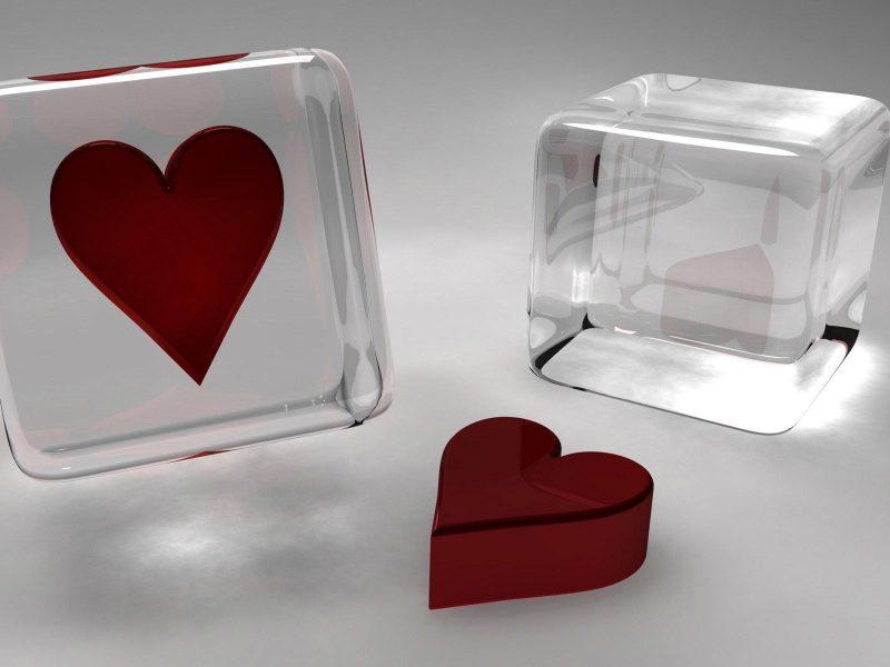 amor-3d