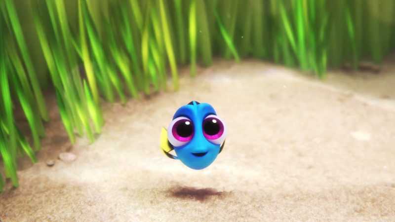 baby-dory-finding-dory-wallpaper