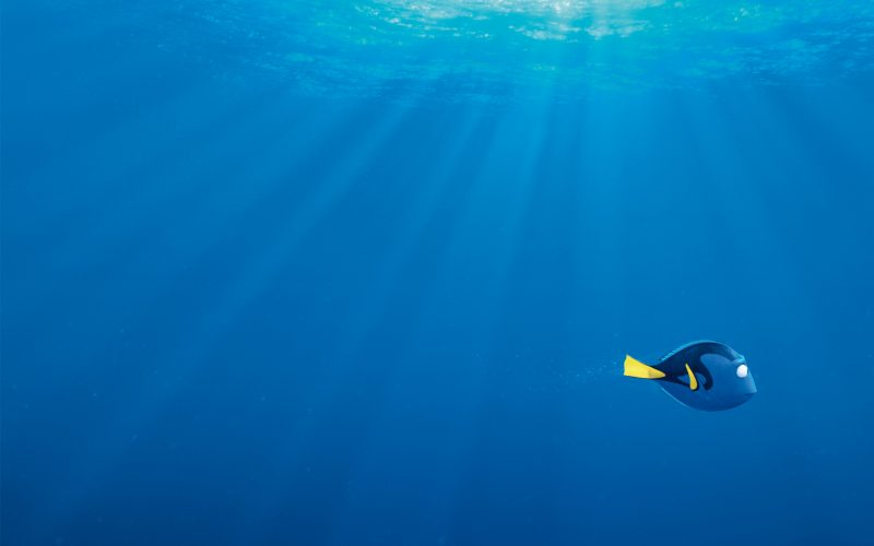 buscando-a-dory-wallpapers-hd
