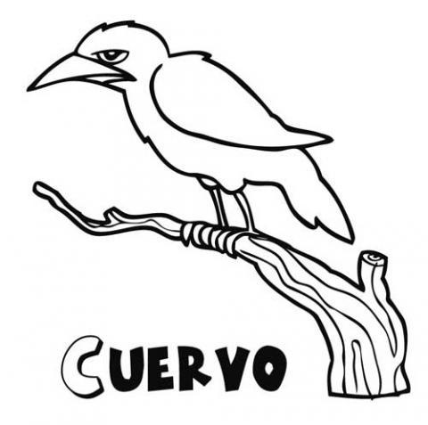 cuervo-halloween