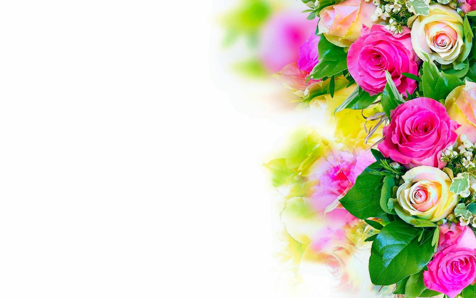 Fondos De Pantalla Hd Fondos: Fondos De Flores, Wallpapers HD Gratis