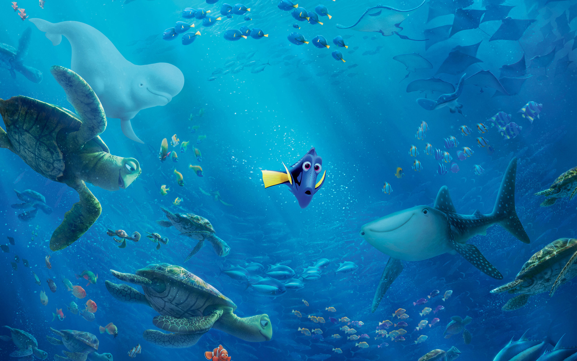 Buscando A Dory Wallpapers, Finding Dory Disney Fondos Hd