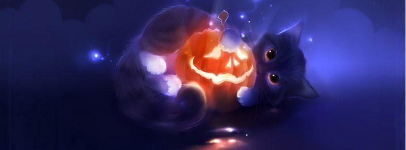 gato-magico-portada-halloween-facebook