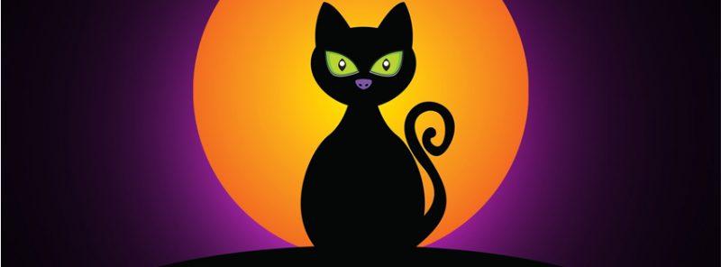 gato-negro-ojos-verdes-portada-facebook