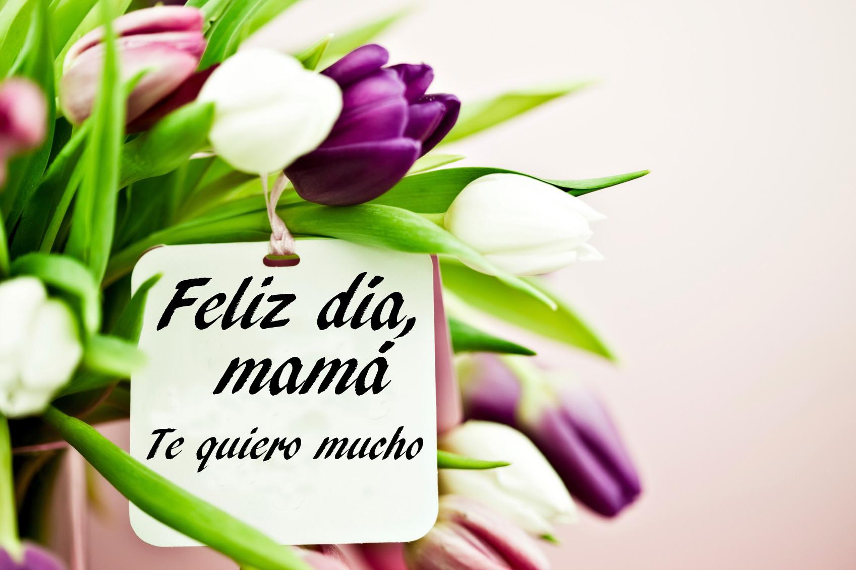 Imágenes Día De La Madre Para Whatsapp Y Facebook: Tarjetas Dia De La Madre Para Enviar E Imprimir Gratis